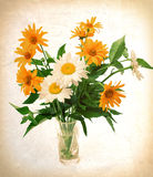 Bouquet of wild flowers Stock Images
