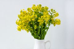 Bouquet of wild flowers in a vase stock photo