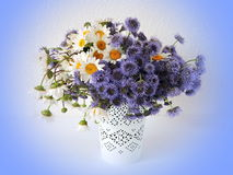 Bouquet of wild flowers in vase Royalty Free Stock Photos