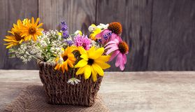 Bouquet of wild flowers vintage board Stock Images