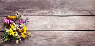 Bouquet of wild flowers vintage board Royalty Free Stock Photo
