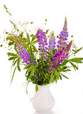 Bouquet of wild flowers on a white background Royalty Free Stock Photography