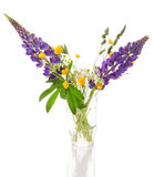 Bouquet of wild flowers on a white background Stock Photo