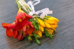 A bouquet of wild quince and crocus Royalty Free Stock Photo