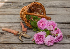 Bouquet of wild rose in vintage style on basket Stock Photo