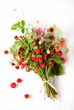 Bouquet of wild strawberries Royalty Free Stock Images