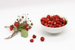 Bouquet of wild strawberry berries close-up royalty free stock image