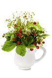 Bouquet of wild strawberry Stock Images