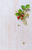 Bouquet of wild strawberry on the table Royalty Free Stock Image