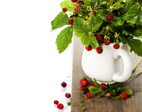 Bouquet of wild strawberry Stock Photography