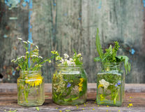Bouquet of wild summer flowers in a glass jar Royalty Free Stock Image