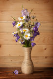 Bouquet of wildflowers Stock Images