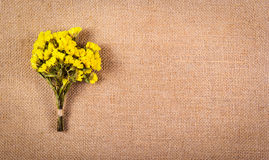 A bouquet of wildflowers on the background of sacking. Dry yellow flowers on a natural linen background. Copy space. A bouquet of wildflowers on the background Stock Photos