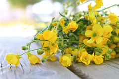 Bouquet of wildflowers. Bouquet of flowers on the wood Royalty Free Stock Image