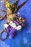 Bouquet of wildflowers and old rusty scissors Stock Image