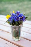 Bouquet of wildflowers in plastic glass on wooden Stock Photo