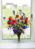 Bouquet of wildflowers on a plastic window Stock Photography