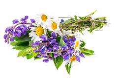 Bouquet of wildflowers on white background Royalty Free Stock Photos