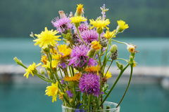 Bouquet of Wildflowers Royalty Free Stock Photography