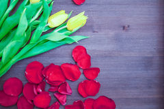 Bouquet on the Wooden Background. Tulips the Bouquet on the Wooden Background of the Board, the Spring yellow Blossoming Sheaf, Office on Wooden Structure Royalty Free Stock Photo