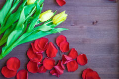 Bouquet on the Wooden Background. Tulips the Bouquet on the Wooden Background of the Board, the Spring yellow Blossoming Sheaf, Office on Wooden Structure Stock Photography