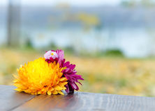 Bouquet on wooden table and the view Stock Photos