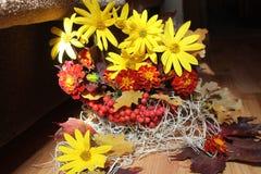 Bouquet& x28;autumn& x29; 免版税库存图片