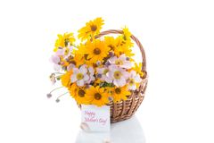 Bouquet of yellow big daisies. Isolated on white background Stock Photography