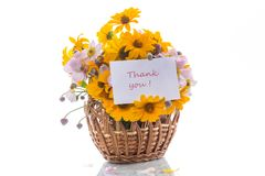 Bouquet of yellow big daisies. Isolated on white background Royalty Free Stock Photo