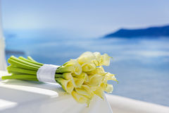 Bouquet with yellow Callas Stock Images