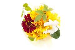Bouquet of yellow chrysanthemum Stock Photos