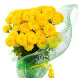 Bouquet of yellow colours. Yellow flowers in a bouquet from a green grid Royalty Free Stock Images