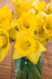 Bouquet of yellow daffodil flowers in a jar Stock Photos