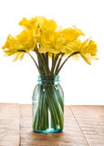 Bouquet of yellow daffodil flowers in a jar Royalty Free Stock Photos