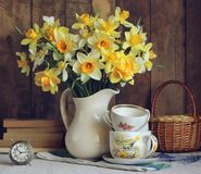 Bouquet of yellow daffodils in a white jug. Royalty Free Stock Image
