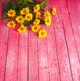 Bouquet of yellow daisies Royalty Free Stock Photos