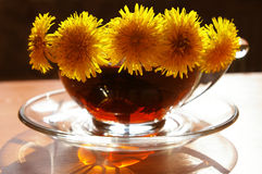 Bouquet of yellow dandelions Stock Photography