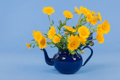 Bouquet yellow flowers on blue background Royalty Free Stock Photography