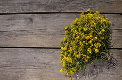 Bouquet of yellow flowers buttercups Royalty Free Stock Photo