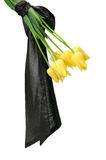 Bouquet of yellow flowers Royalty Free Stock Photos