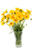 A bouquet of yellow flowers Stock Image