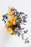 Bouquet of yellow freesias Stock Images