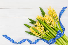Bouquet of yellow hyacinths decorated with blue ribbon on white wooden background. Top view Stock Image