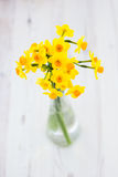 Bouquet of yellow lent lilly (daffodil) on a wooden surface Stock Photo