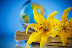 Bouquet of yellow lilies with a book Stock Photos