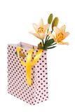 Bouquet of yellow lilies in a gift bag isolated Royalty Free Stock Images