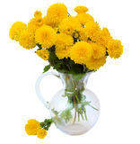 Bouquet of yellow mums in vase Stock Photos