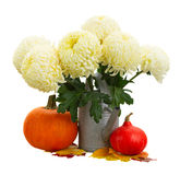 Bouquet of yellow mums in watering can Royalty Free Stock Images