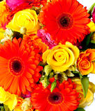 Bouquet of yellow and orange flowers Royalty Free Stock Photo