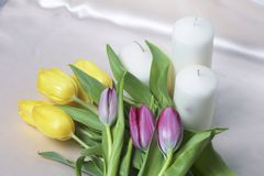 A bouquet of yellow and pink tulips is scattered on a light surface. Nearby are decorative candles. Close-up, top view. A bouquet of yellow and pink tulips is Stock Images